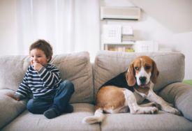 Como limpar sofás e lavar estofos de diferentes materiais