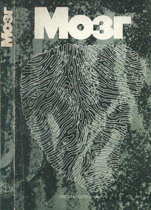 Мозг Хьюбел Д. (1984)