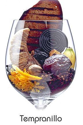 Tempranillo #taninotanino #vinosmaximum.   TEMPRANILLO: Pflaume, Banane, Getrocknete Feige, Dattel, Orangenschale, Wacholder, Gewürznelke, Schwarzer Pfeffer, Muskatnuss, Kakao, Gegrilltes Brot, Lebkuchen