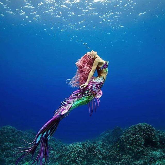 картинки русалки в природе просто увидели