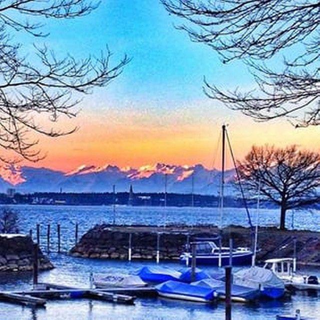"""Repost von @tabea_viscontea """"guten morgen welt! #see #lake #lakeofconstance #bodensee #schnee #snow #berge #mountains #baum #äste #morgenrot #schönestimmung #montag #monday #montagmorgen"""""""