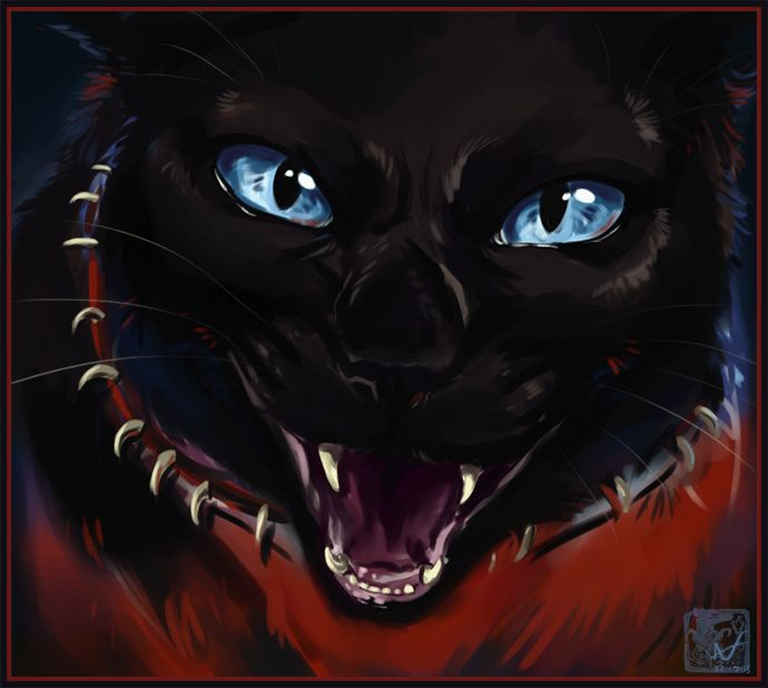 25+ Best Ideas About Warrior Cats Scourge On Pinterest
