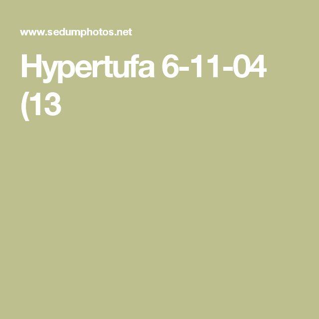 Hypertufa 6-11-04 (13