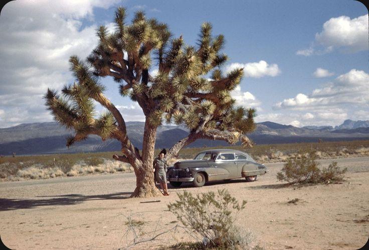 Америка 40-х в цвете • Arizona 1947
