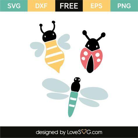 Download Bee, ladybug & dragonfly   cricut   Cricut, Free svg cut ...