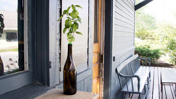 Urban Leaf Self Watering Windowsill Herb Garden Herb 400 x 300