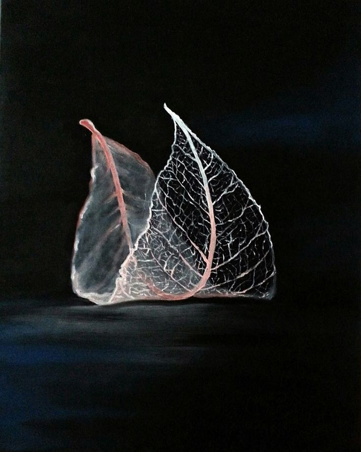 Leaf. Oil on canvas. Size : 50 x 40 cm