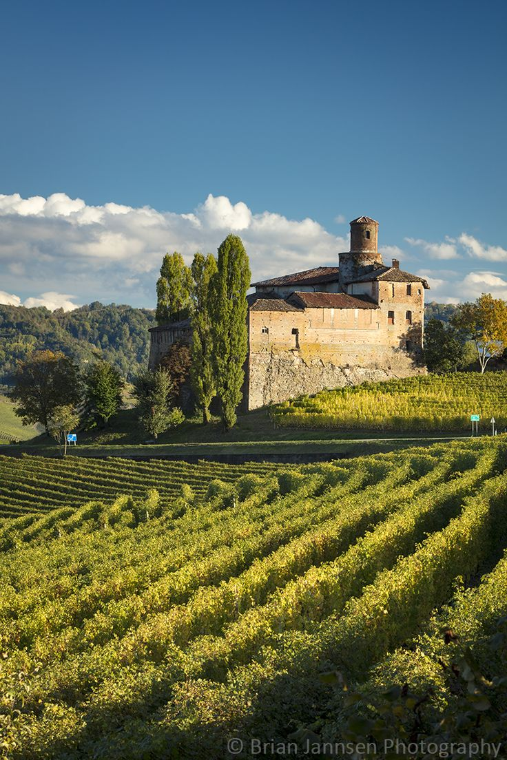 Castello della Volta and vineyards near Barolo, Italy. © Brian Jannsen Photography