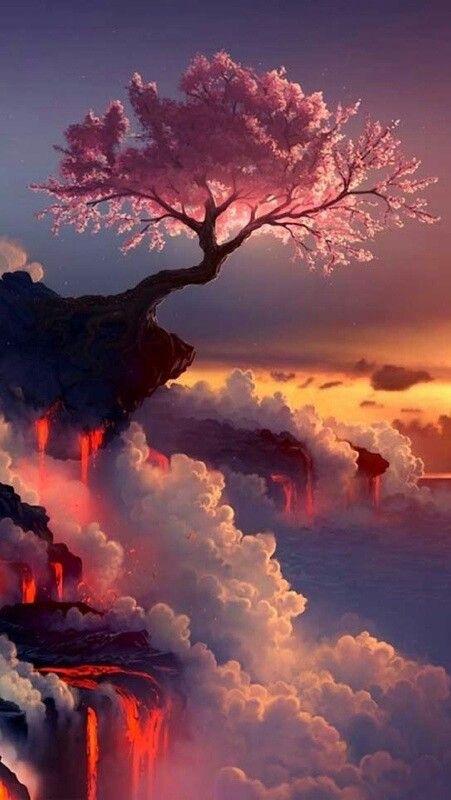 -wow!!! Esta foto es una belleza!!! Cherry Blossom Tree                                                                                                                                                      Más