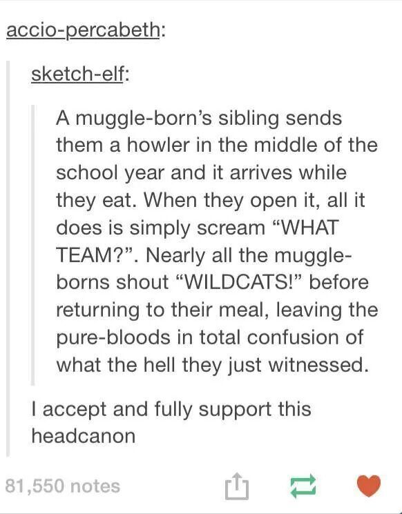 "Muggle borns at Hogwarts (of all houses because ""we're all in this together!"""