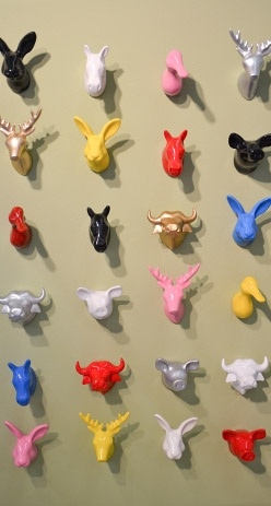 KT - cool solid colour animal hooks