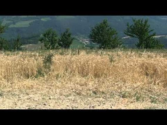 (CREDIT: YouTube)  Weirdest Attractions In Italy:  Monte Busca Volcano (Italy's 'smallest volcano' is more of an inside joke among locals in Emilia Romagna than an actual volcano. Monte Busca Volcano is a small mound of rocks which features constant flames. The natural gas vent covered by the rocks by locals resembles a campfire and its fire was used in World War II to cook food.)