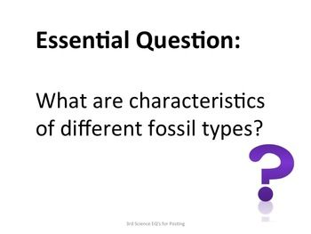 3rd Grade Science Essential Questions for Posting