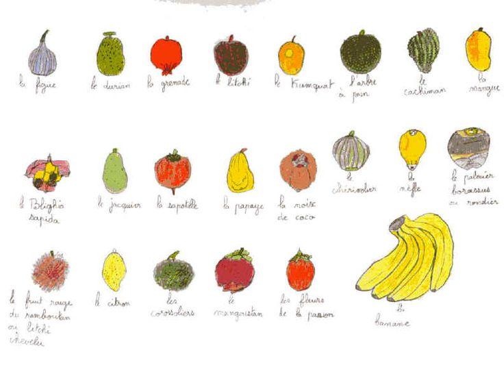 Les fruits exotiques rock exotique pinterest ovocie - Image fruit exotique ...