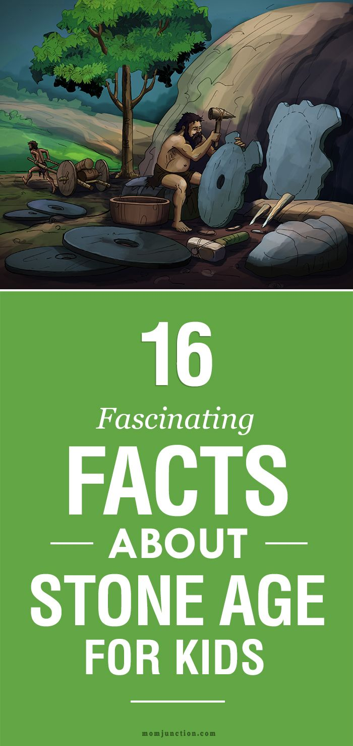 16 Fascinating Facts About Stone Age For Kids: MomJunction has compiled 16 interesting Stone Age facts for kids. Read on to learn more.