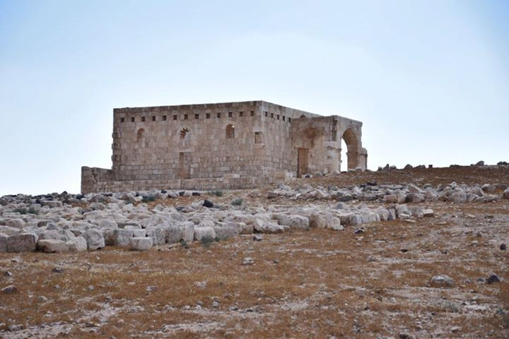 7 best Petra Day Trip images on Pinterest Amman, Jordan tours and