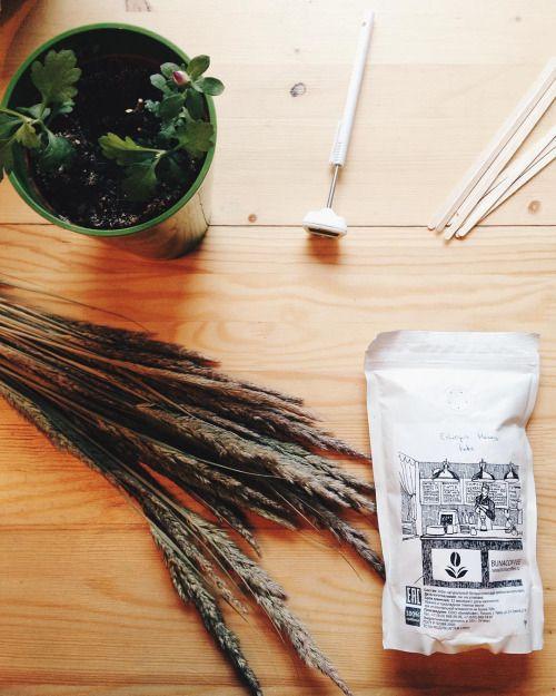 INTERNATIONAL COFFEE DAY🎉 Поздравляем всех с Днем Кофе! Всех, кто выращивает, собирает, отбирает, обжаривает, заваривает и искренне любит этот напиток. Напоминаем, что сегодня в #ohmytea мы дарим каждому стаканчик черного кофе на зерне @coffeetver...