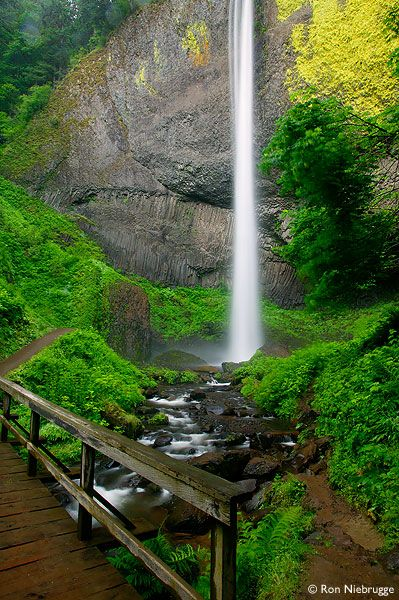 Latourell Falls, 224', Guy W. Talbot SP, CR Gorge, near Troutdale: the parkland stretches W to the Crown Pt State Scenic Corridor. photo: Ron Niebrugge http://en.wikipedia.org/wiki/Guy_W._Talbot_State_Park