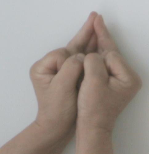 Javallat: A mellkas, az orrüreg, a gége, a szájüreg, a garat, a légcső, a hörgők, a tüdő, a szív, a rekeszizom, az ízületek, az inak, a szalagok, a kötőszövet, a zsírszövet, a száj megbetegedései esetén használható. Stabilizálja a szöveteket, harmonizálja a váladéktermelést (nyál, nyálka, könny, stb.), az ízületeknek kenést biztosít, erősíti az immunrendszert, fokozza az állóképességet, az életerőt, jó hatással van a plazmára és a citoplazmára.
