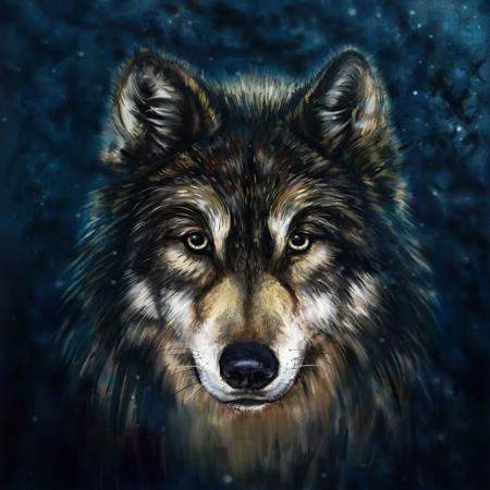 Animal Wall Painting