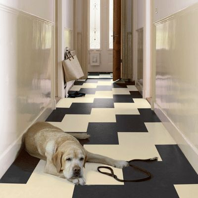 Vintage Space with Marmoleum. The cute dog is just an additional perk :)