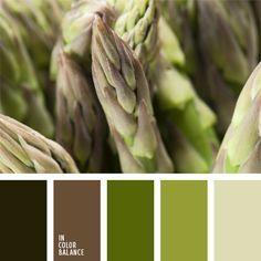 color brote joven, color del espárrago, color verde aceituna, color verde helecho, gris, marrón verdoso, oliva, paleta de colores monocromática, paleta del color verde monocromática, tonos verdes, verde grisáceo, verde lechuga claro, verde oliva oscuro, verde pantano, verde pastel.