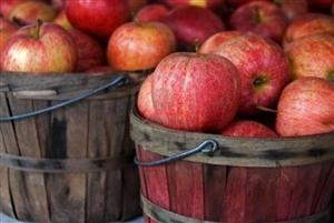 Apples are a crunchy, sweet, and satisfying snack that have immune boosting and disease preventing properties. They are a highly alkaline fruit that have the ability to quench both an immediate and cellular-level thirst. Apples are also an amazing detoxifier and contain both malic and tartaric acids that help remove impurities from the liver and gallbladder.
