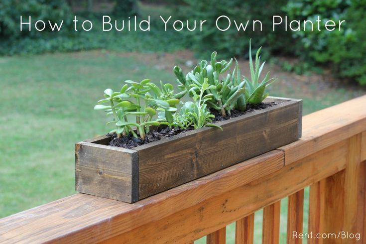 Why spend money on expensive, cheap-looking plastic planters when you can make your own wooden planter box for your apartment? Let Rent.com show you how!