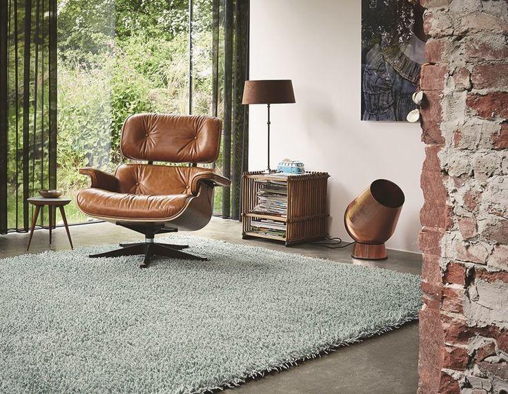 riverstone teppe og moderne hjem - Google-søk