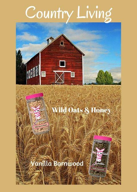 Soy Sprinkles: Wild Oats & Honey and Vanilla Barnwood = A MUST TRY FRAGRANCE! www.pinkzebrahome.com.pattyanderson