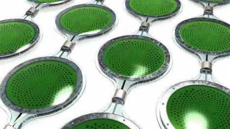 Algae Solar Panels    When chemical engineers and plant scientists work together, they can produce sustainable products with a lot of real-life potential – as evidenced by this concept by the University of Cambridge. They're biophotovoltaics – solar panels containing living algae.