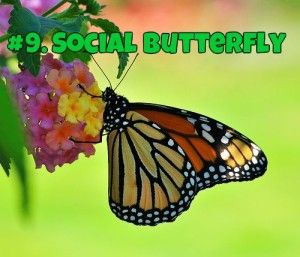 The Social Butterfly Technique: How to use Facebook for maximum effect in your crowdfunding campaign - Kick Start your journey