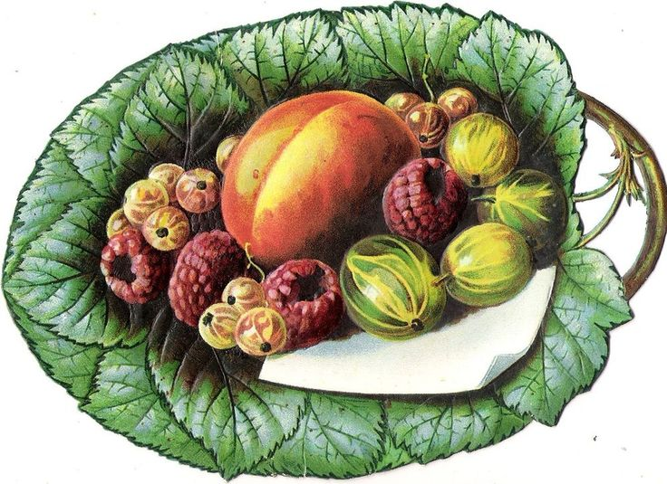 Oblaten Glanzbild scrap die cut chromo Obst XL  17cm  Frucht fruit
