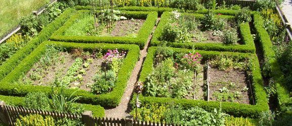 Garten-Video ❖ Bauerngarten ❖ anlegen und bepflanzen ❖ mit