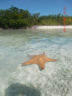 Plaża Sirena
