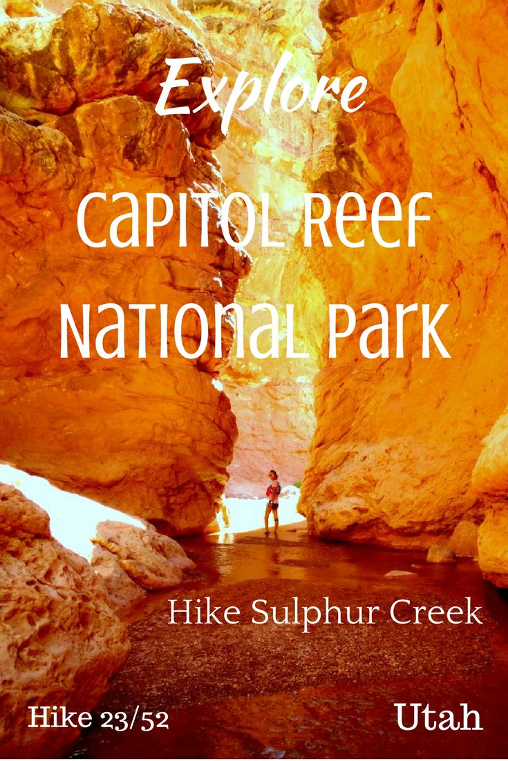 Looking to Explore Capitol Reef National Park? Read about our time there. Hike Capitol Reef National Park in Utah.