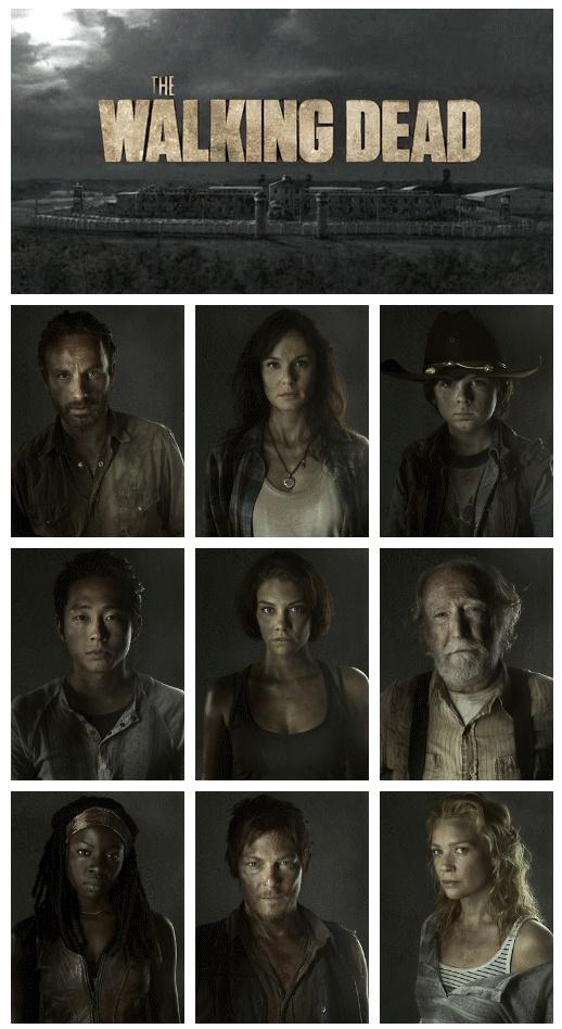 The Walking Dead http://pinterest.com/yankeelisa/the-walking-dead/