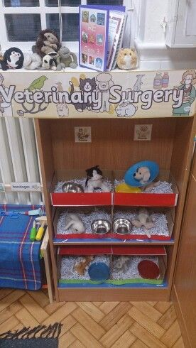 Private animal healthcare in class 3.... Or in other words a vets role play area.