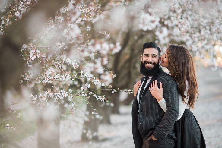 Almond blossom engagements, cherry blossom photos, almond blossoms photoshoot