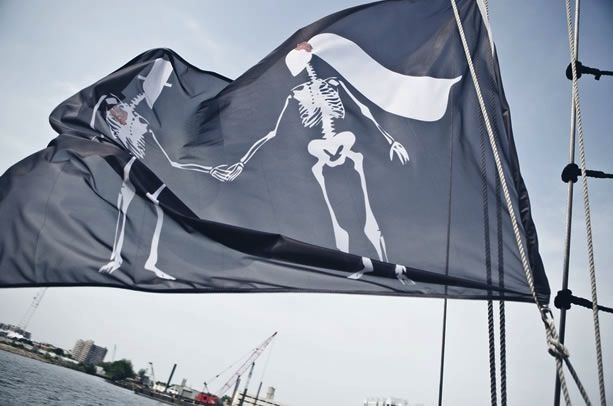 Pirate wedding flag