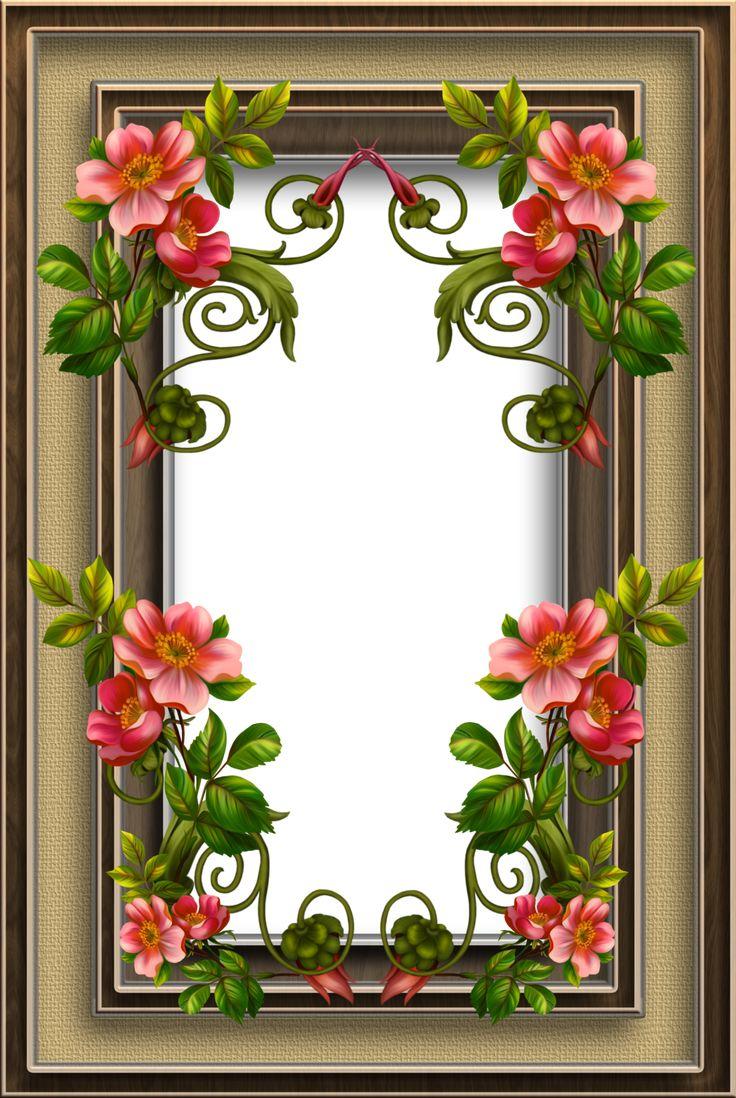 Картинки цветов в рамке