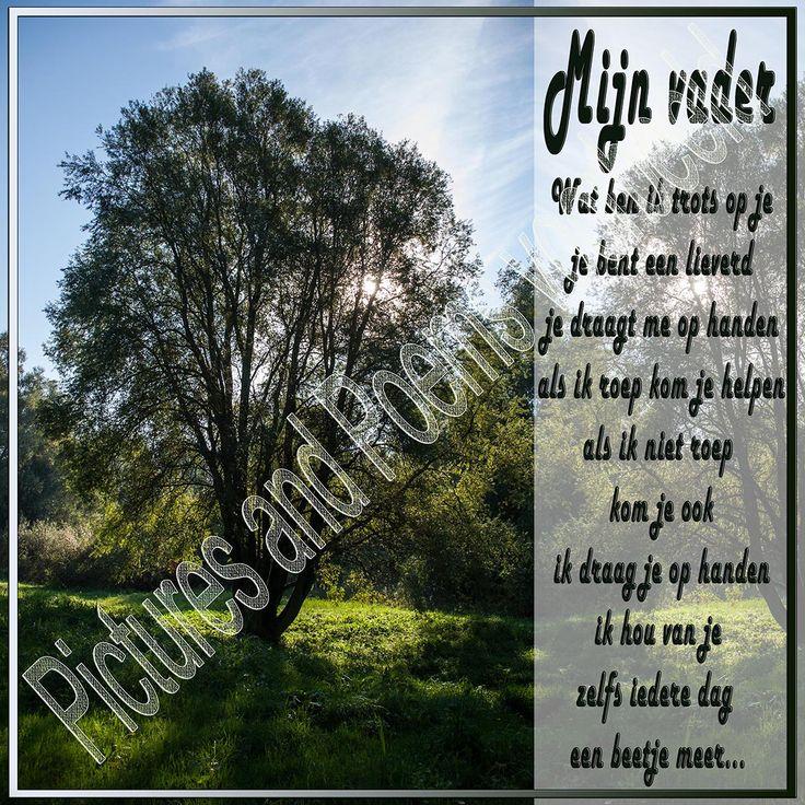 Foto 52, Mijn vader. Zomaar een wandeling bij het Geestmerambacht, het zonnetje piept achter de boomtakken door. Mijn vader, ook een zonnetje en vandaar deze prachtige tekst voor mijn en voor iedere vader.