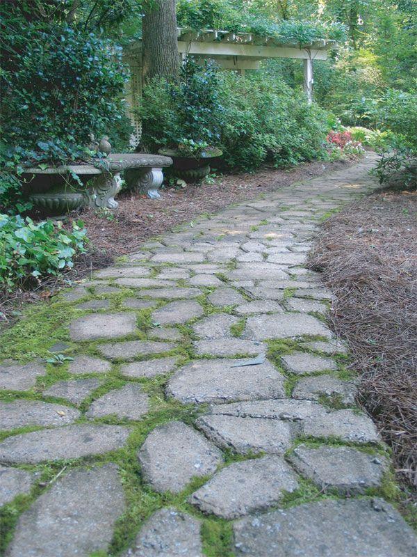 25 best ideas about walking paths on pinterest wood for Walk maker ideas