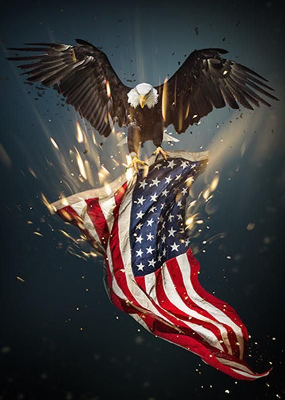 Eagle Pictures With American Flag Free