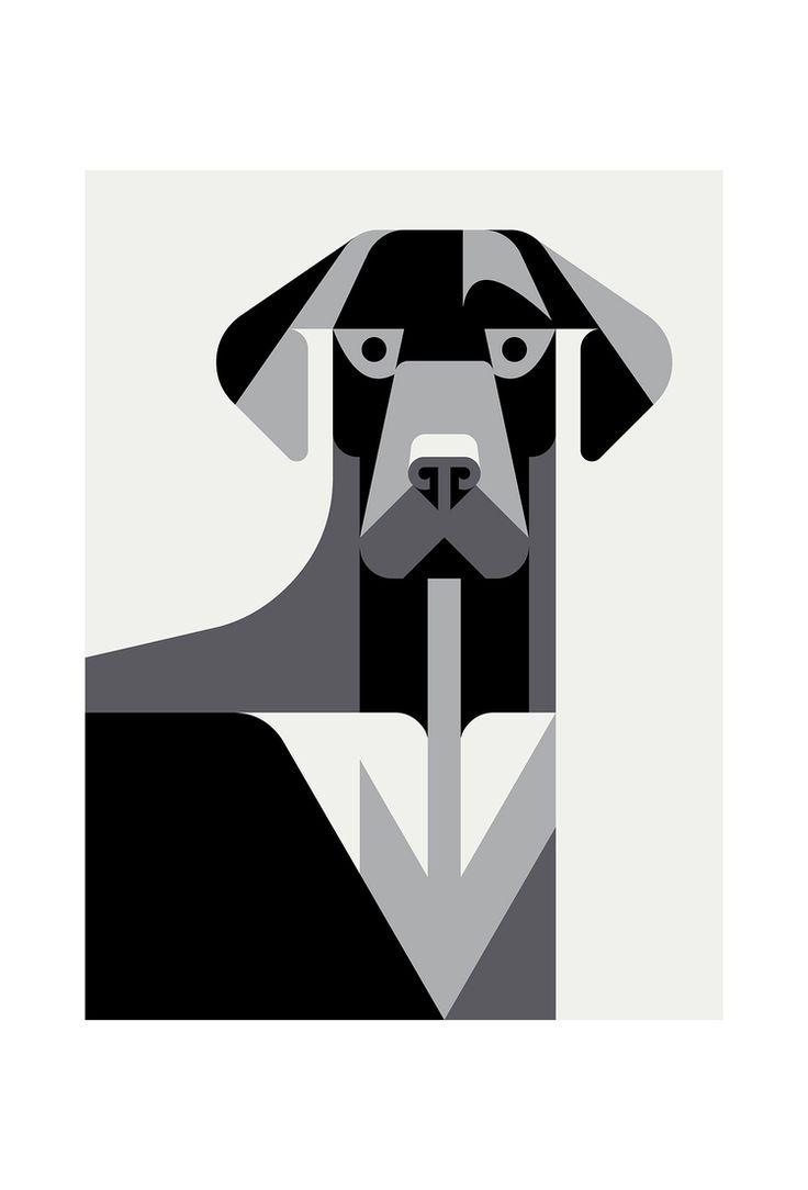 Labrador Retriever Portrait by Josh Brill