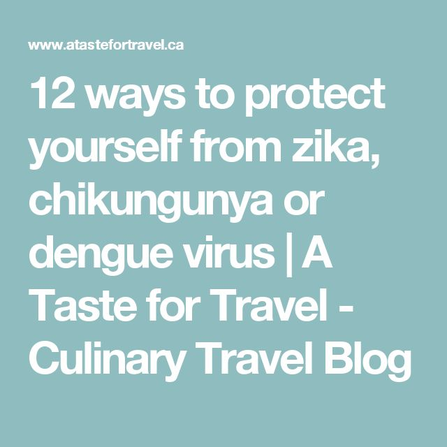 12 ways to protect yourself from zika, chikungunya or dengue virus   A Taste for Travel - Culinary Travel Blog