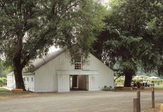 Picnic outside the Barn