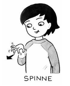 sprechende-haende.de - Der größte Blog über Kindergebärden: Kindergebärde für Spinne