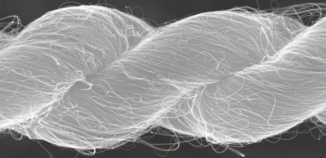 Producing artificial muscles more powerful than anything in nature using carbon nano tubes   By EarthSky.org