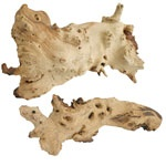 Natural Driftwood for Aquariums at That Fish Place